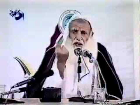 fatwa syaikh